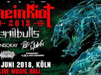 RheinRiot 2018